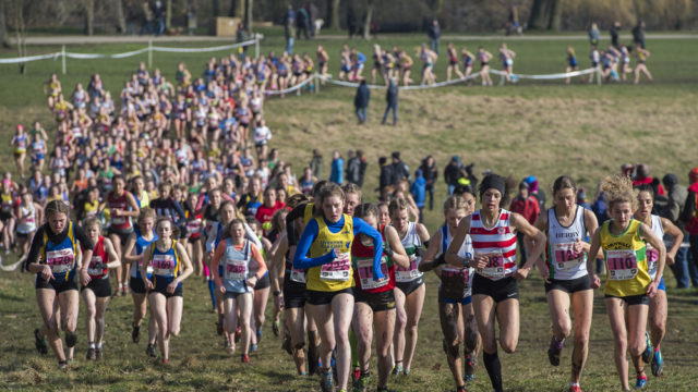 the national cross country championships